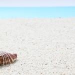 伊豆の海水浴場!海と砂浜がきれいなビーチランキング!