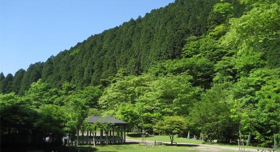 tokyo_camp12