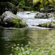 hyogo_river
