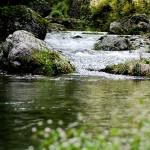 兵庫県で川遊びが出来てコテージがあるおすすめのキャンプ場9選!