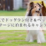関東でドッグラン付き&ペット可のコテージに泊まれるキャンプ場9選!