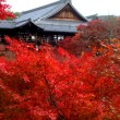 kyoto_to01