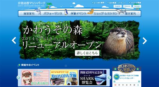 suizokukan05 関東の水族館で子供におすすめのイルカショーが見られる人気の水族館8選!