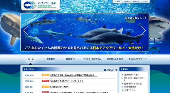 suizokukan08 関東の水族館で子供におすすめのイルカショーが見られる人気の水族館8選!