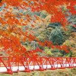 関西で紅葉の見える温泉へ!オススメのおしゃれ温泉8選!