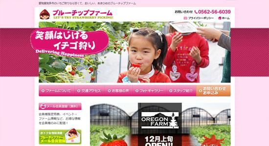 nago st03 愛知でイチゴ狩りができるオススメの農園9選!時間無制限の食べ放題がある農園も!