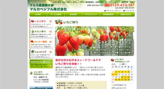 nago st06 愛知でイチゴ狩りができるオススメの農園9選!時間無制限の食べ放題がある農園も!