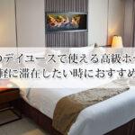 東京のデイユースで使える高級ホテルおすすめ6選!気軽に滞在したい時におすすめ!