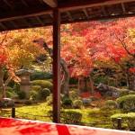 京都一乗寺の紅葉!おすすめスポットと人気カフェ4選!