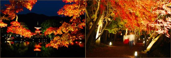 saga ko01 京都嵐山、穴場の紅葉へ。奥嵯峨の紅葉とおすすめレストラン!