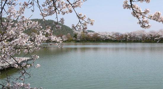 arashiyama_sa03