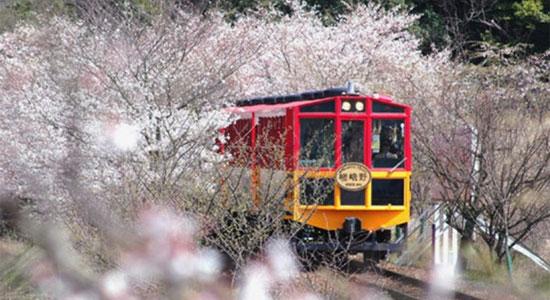 arashiyama_sa06