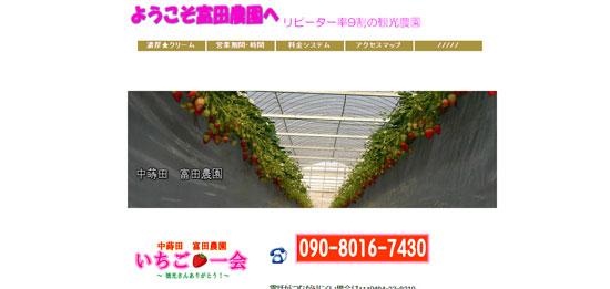 saitama st01 埼玉のイチゴ狩りで予約なしでも食べ放題が出来るおすすめ農園7選!