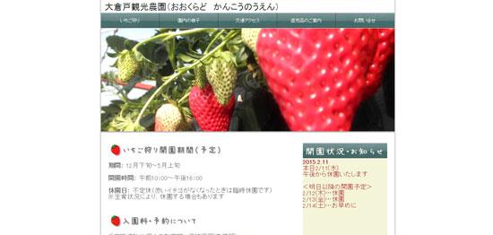 shizuoka_ichi08