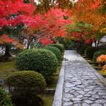 京都紅葉の名所に近いおしゃれなレストランおすすめ8選!