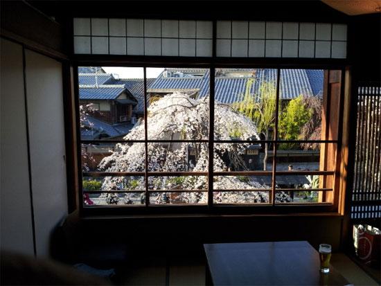 kyo sa r02 京都で桜を見ながら食事が楽しめるレストランおすすめ7選!