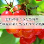 長野で佐藤錦のさくらんぼ狩りが楽しめる農園おすすめ7選!