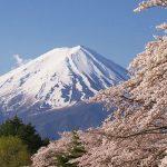 富士山のお土産でおすすめの可愛いお菓子8選!