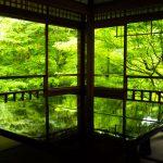新緑の京都でおすすめのスポット穴場から名所まで15選!