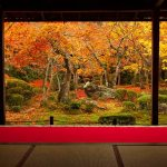 関西で秋の紅葉絶景が楽しめる人気のおすすめスポット12選!
