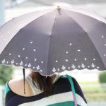 日傘ってどこに売ってる?何月から必要?選び方もご紹介!これを知ってるともう迷わない!