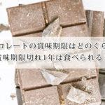 チョコレートの賞味期限はどのくらい?賞味期限切れ1年は食べられる?ブランド別日持ちもご紹介!
