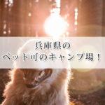 兵庫県のキャンプ場でペット可のおすすめサイト9選!